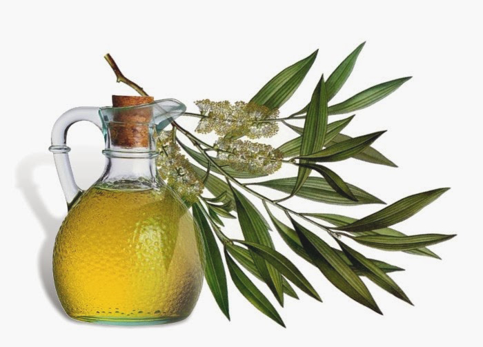 tea-tree-oil2.jpg