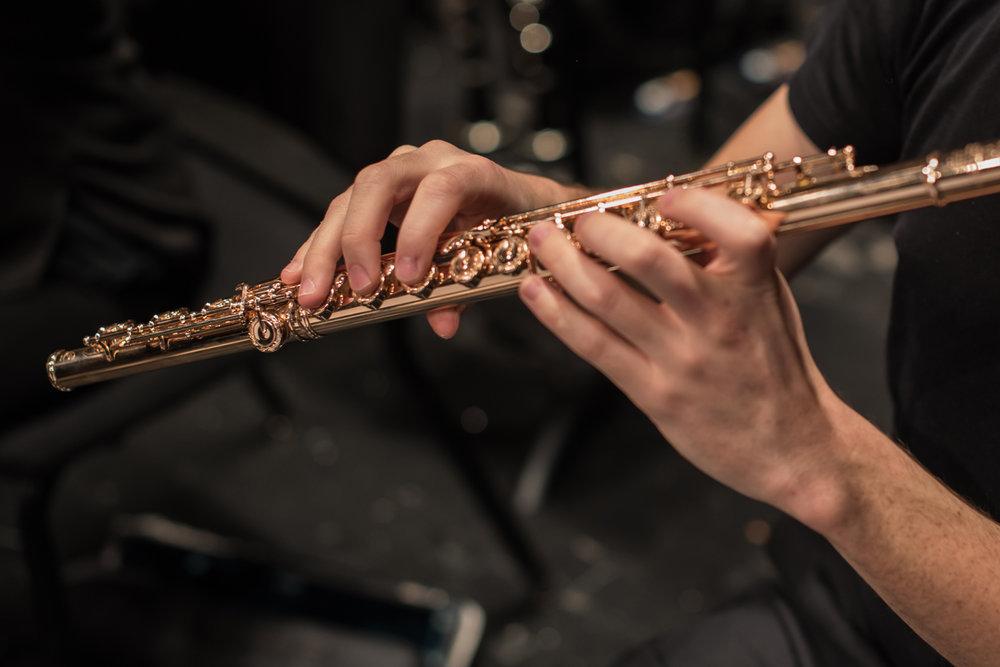 181111-Northbrook-Symphony-(Photo-by-Johnny-Nevin)--3644_1500px.jpg
