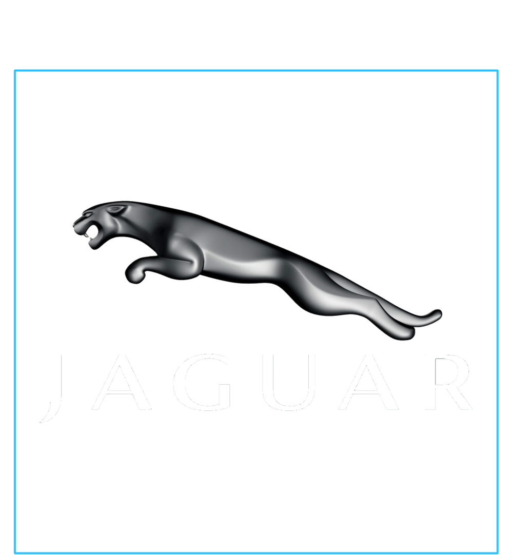 Advertising Square No Text_Jaguar_web.png