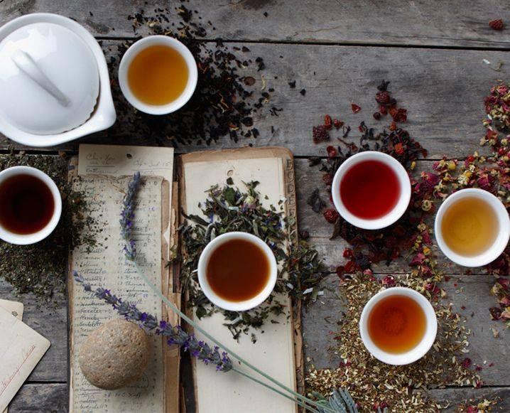 Tea Ceremony I Nature.jpg