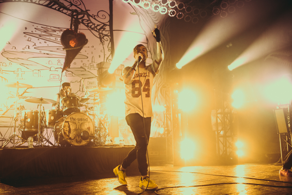 TheUsed_Chicago_5-18-16-7.jpg