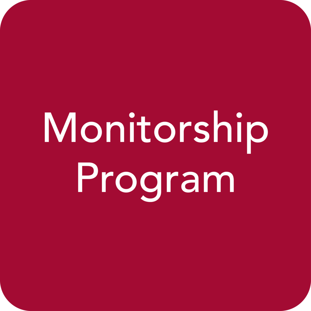 MonitorshipProgram-Icon-01.png