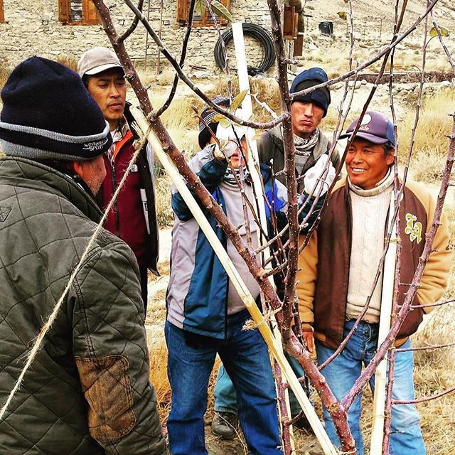 Here's our boys on the ground at the Ghiling Action Apples orchard getting some hot tips from a local apple tree specialist. These apples will be funding the local school in years to come.  How's that for bearing the fruits of your labour?!