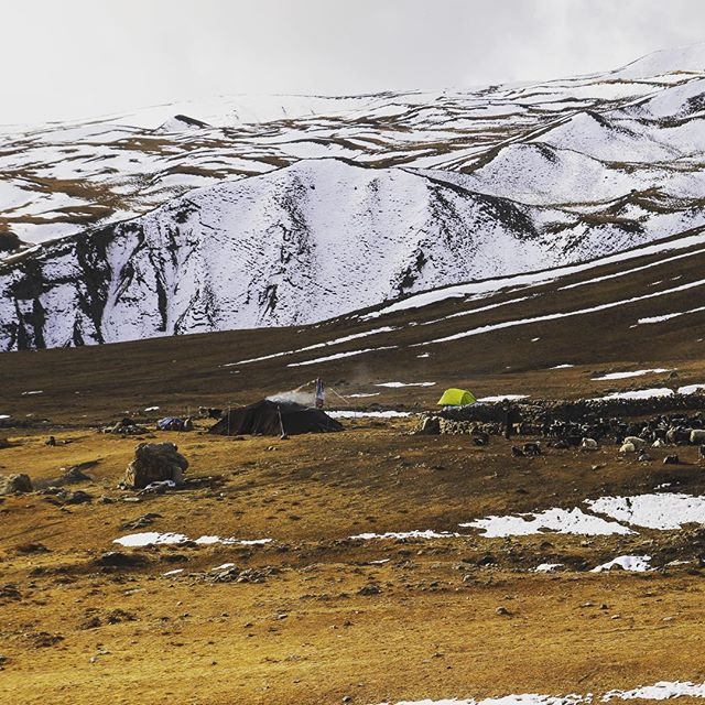Another stunning image of the Upper Mustang region, where nomadic tribes roam the area herding yaks #nepal #upsidenepal #socialenterprise #mountains #himalayas #yaks
