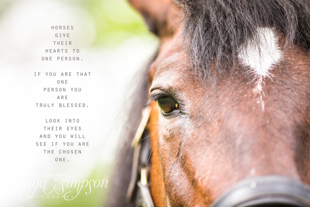 I PUT THIS TOGETHER FOR EMMA - A SPECIAL EDIT - ANGEL'S EYE - THE CORE OF A HORSES SOUL