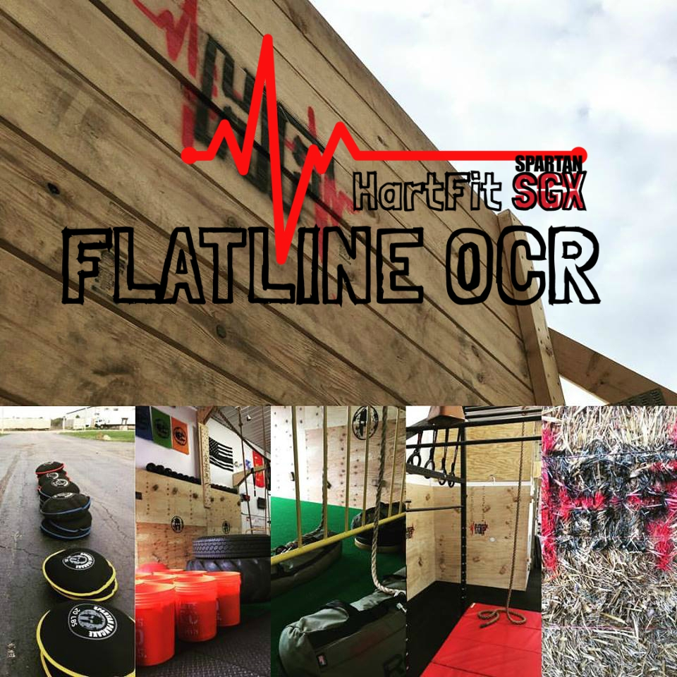 flatline+ocr+11.jpg