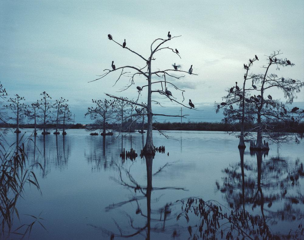 Coastal erosion due to climate change. Terrebonne Parish, Louisiana, USA, 2018.