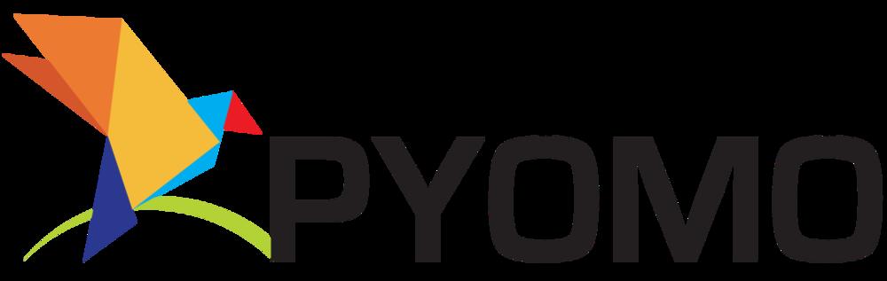 pyomo python
