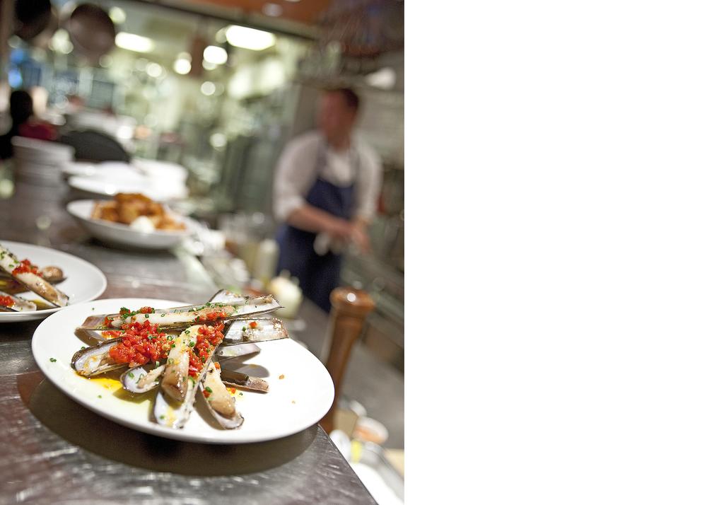 razor clams3.jpg