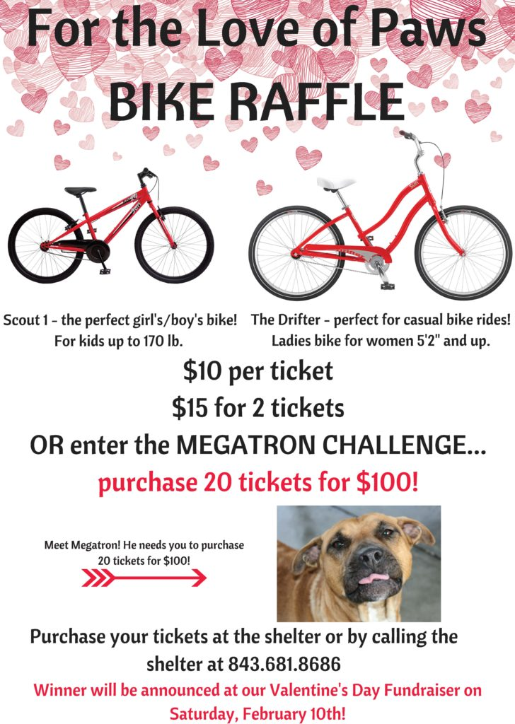 NEW-Megatron-Raffle-Sign-728x1024.jpg