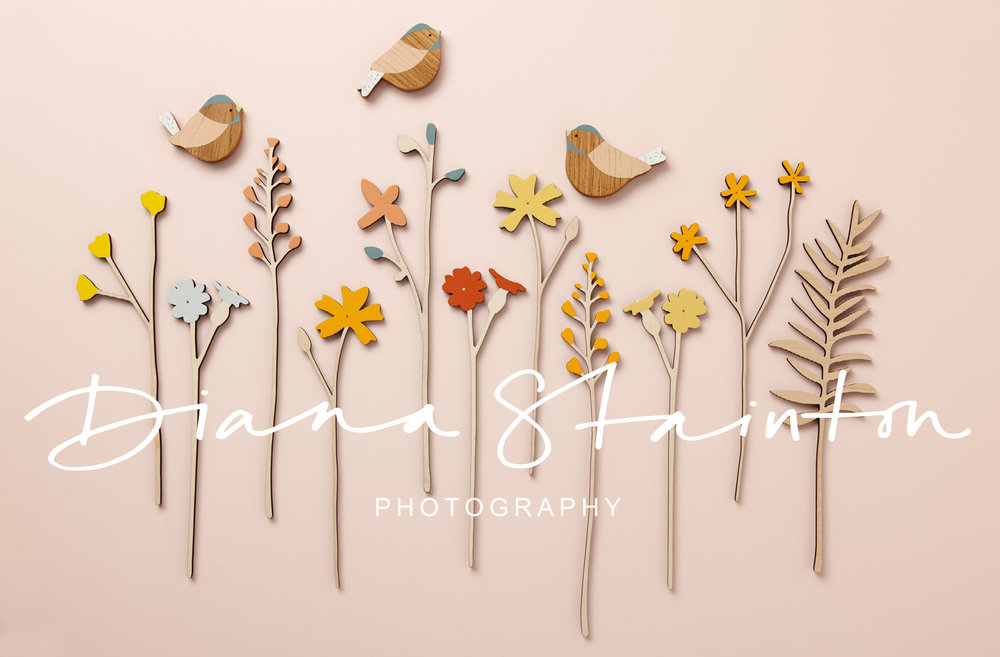 DIANA+STAINTON+PHOTOGRAPHY_INVERTED+LOGO.jpg