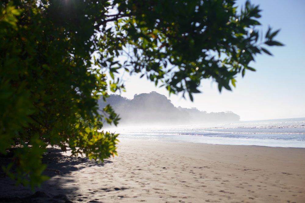 costaricaday74.jpg