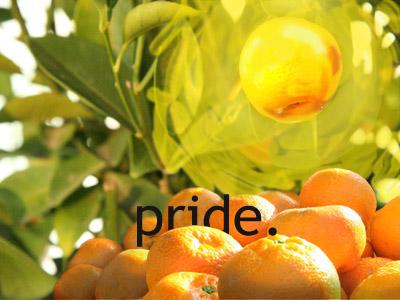 Sins_Pride.jpg