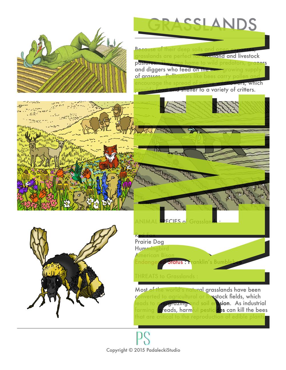Preview_Grasslands 1.jpg