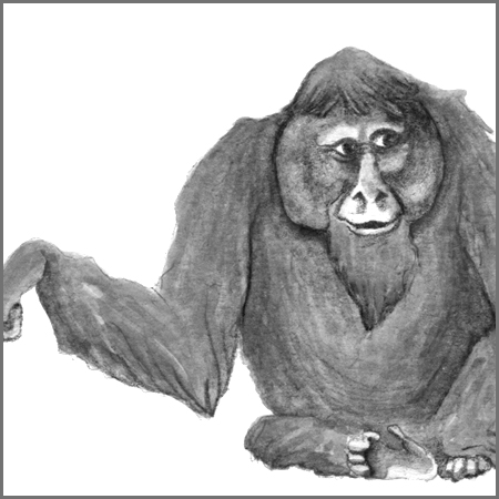 Little Animal Icons_Orangutan.jpg