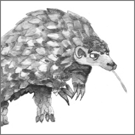 Little Animal Icons_Pangolin.jpg