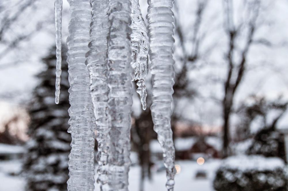 icefeb2014-5686.jpg