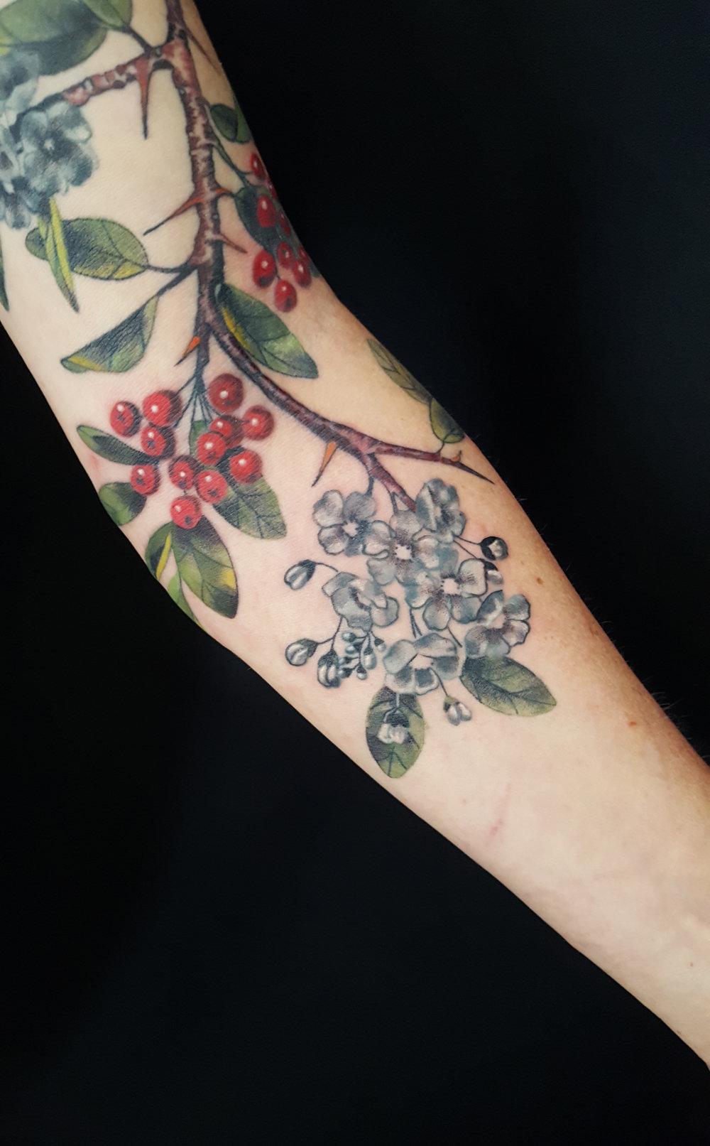 Firethorn Branch