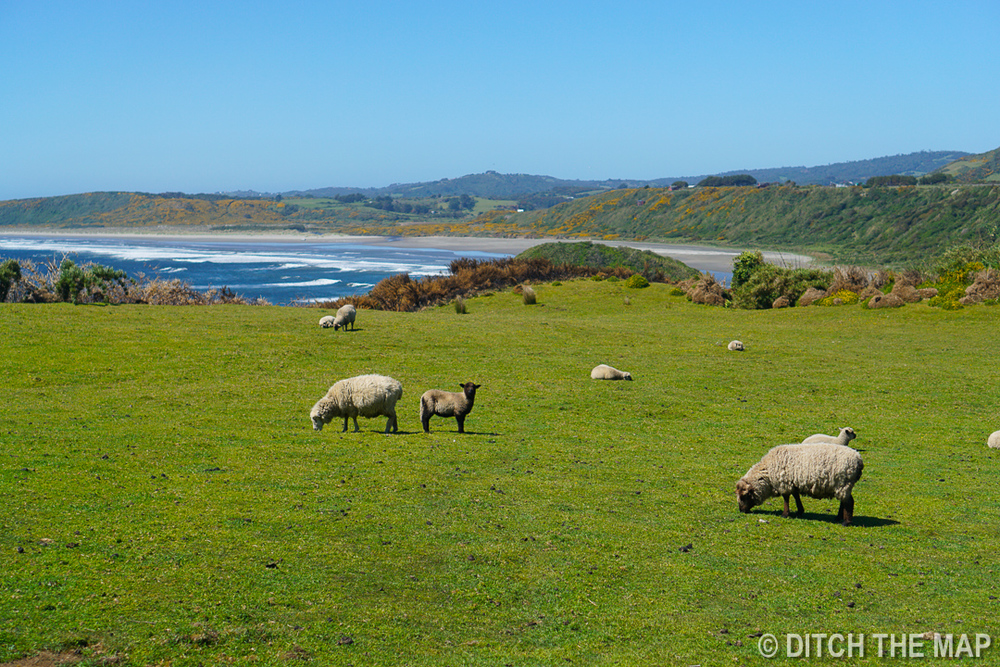 Countryside on the island of Chiloe, Chile