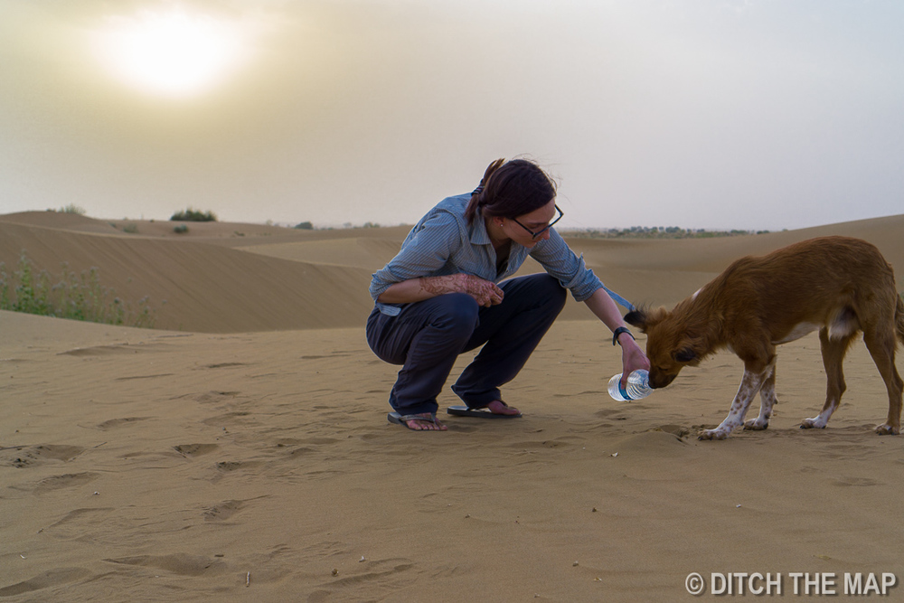 Thar Desert, Jaisalmer, India