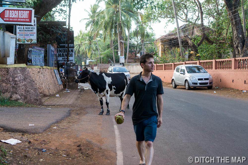 Taking an evening stroll in Candolim, Goa