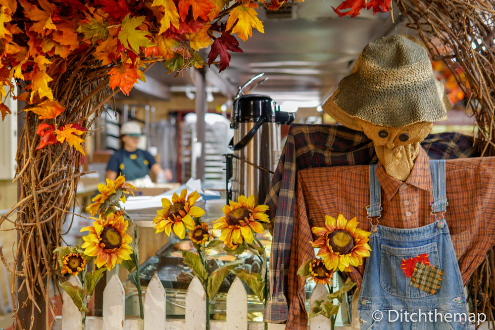 A scarecrow with sunflowers and colorful leaves