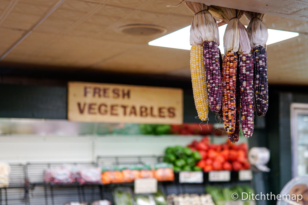 Colorful corn hanging to dry from ceiling
