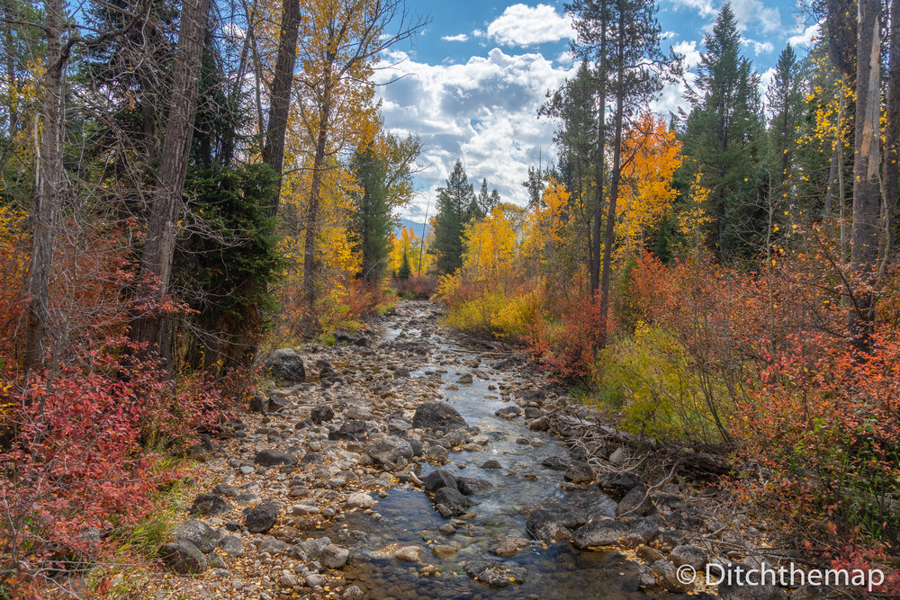 Stream of Water on a Colorful Autumn Day