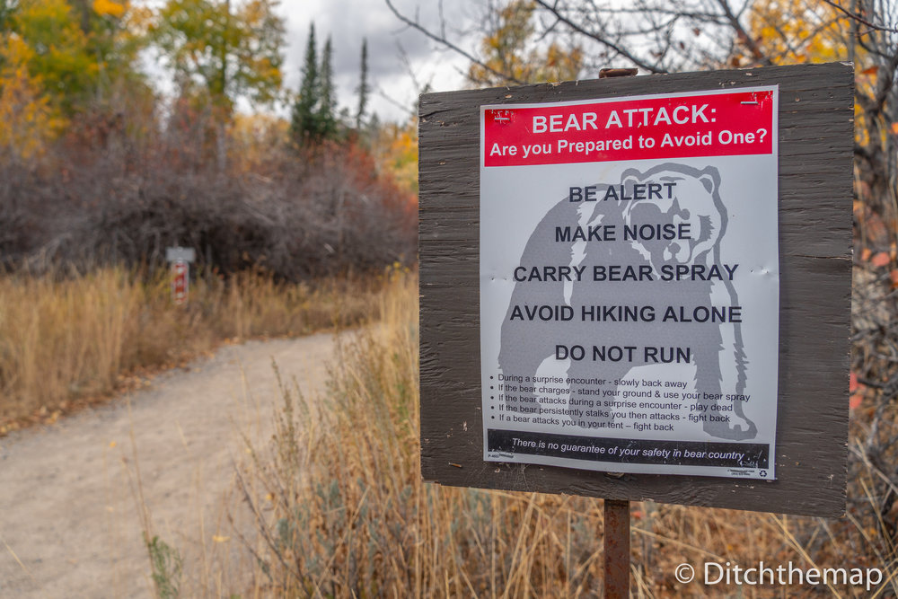 Bear Attack Poster at start of hike