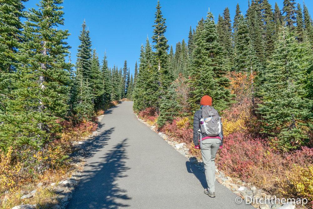 Women hiking Skytrail Loop Hiking Path to Mt. Rainier