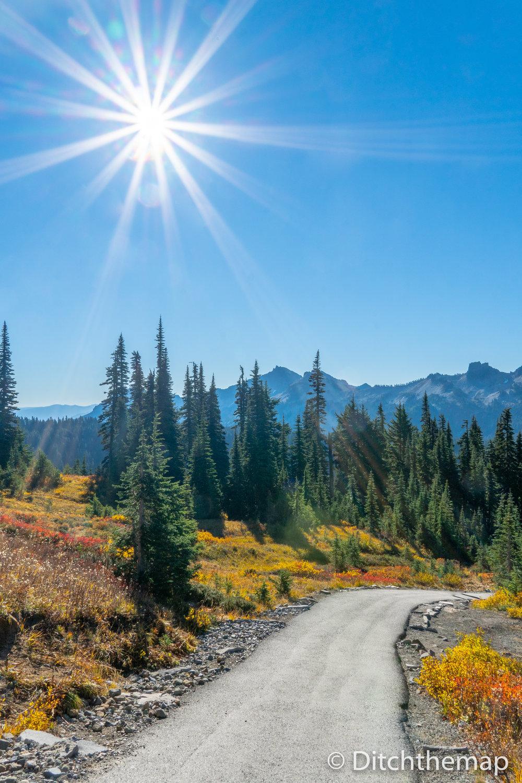 Skytrail Loop Hiking Path to Mt. Rainier with Sun flair