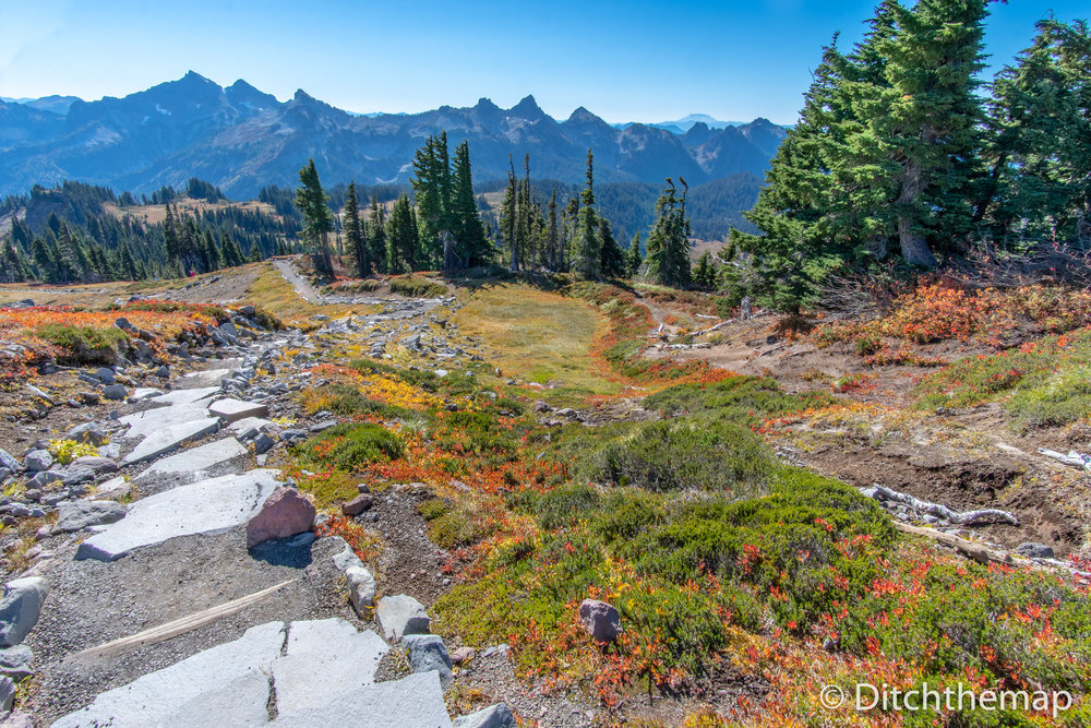Skytrail Loop Hiking Path to Mt. Rainier