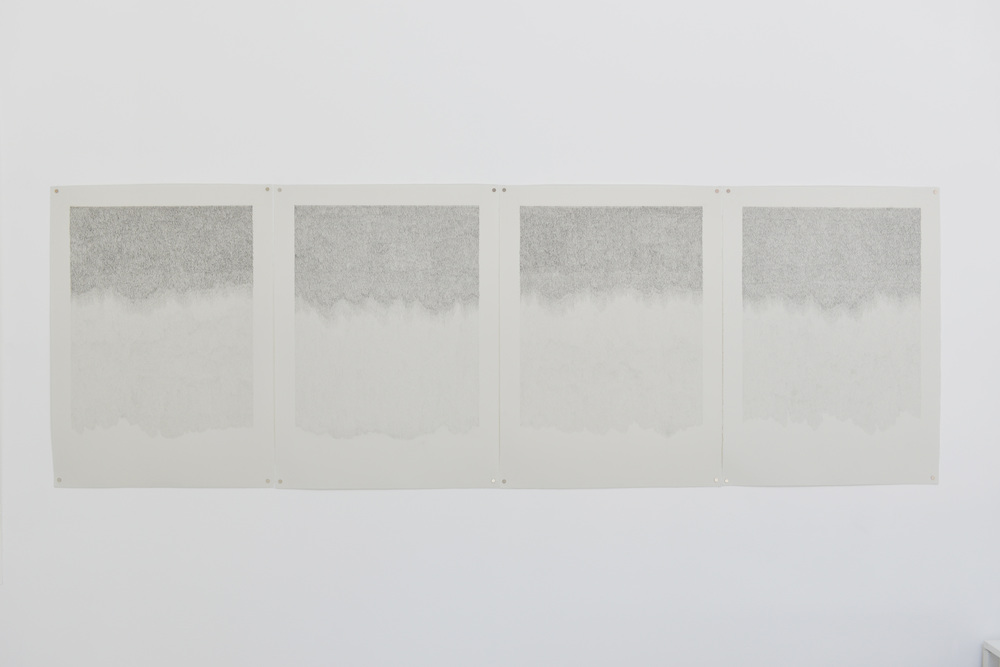 Pony Hair Study (suite of 4), 2014 Graphite on paper, 88 x 30 inches (ind. 22 x 30 inches)