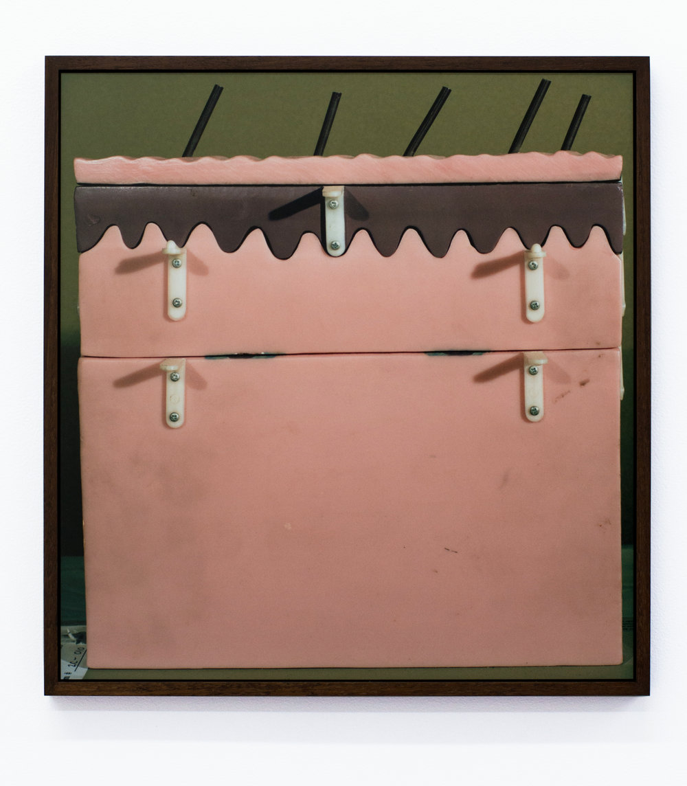 Lucas Blalock   Skin-Sculpture (Rear),  2015 Dye-sublimation print on aluminum with wood frame 19 x 18 inches