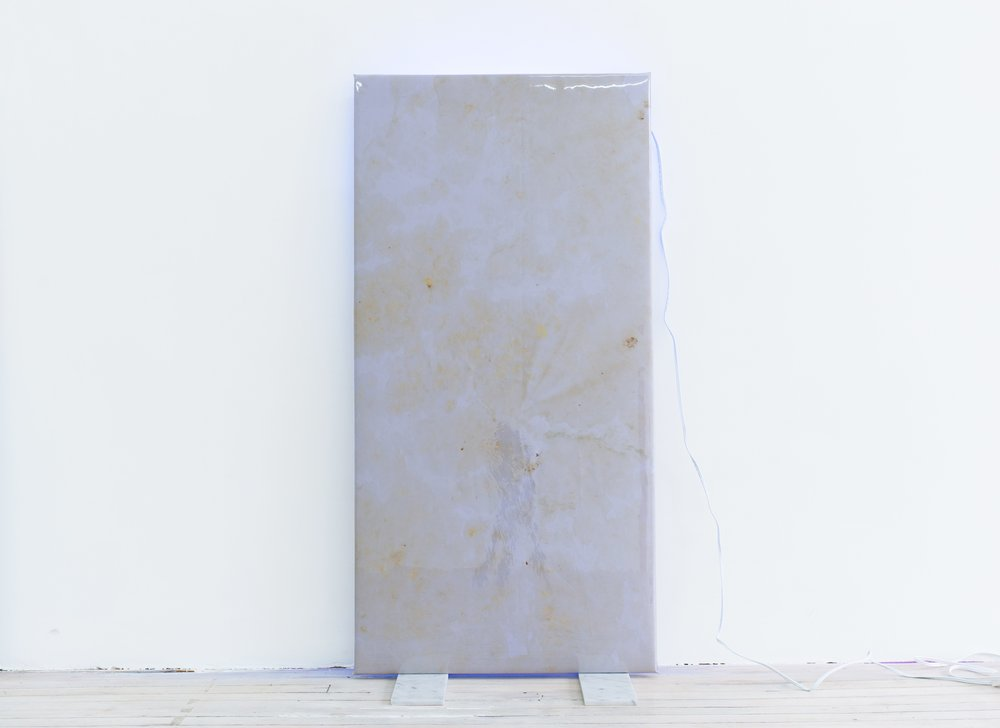 Quay Quinn Wolf, Selection No. 3, 2018 Lily pigments on lavender satin, padding, wood, soft PVC sheet, marble tiles, back lighting, extinction cord 48x24x12inches
