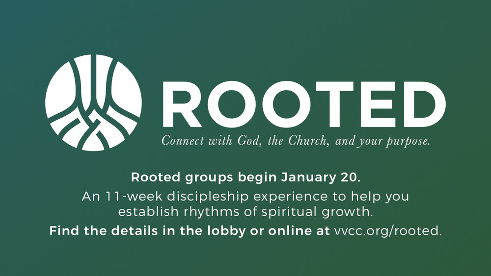 rooted groups dallas texas carrollton