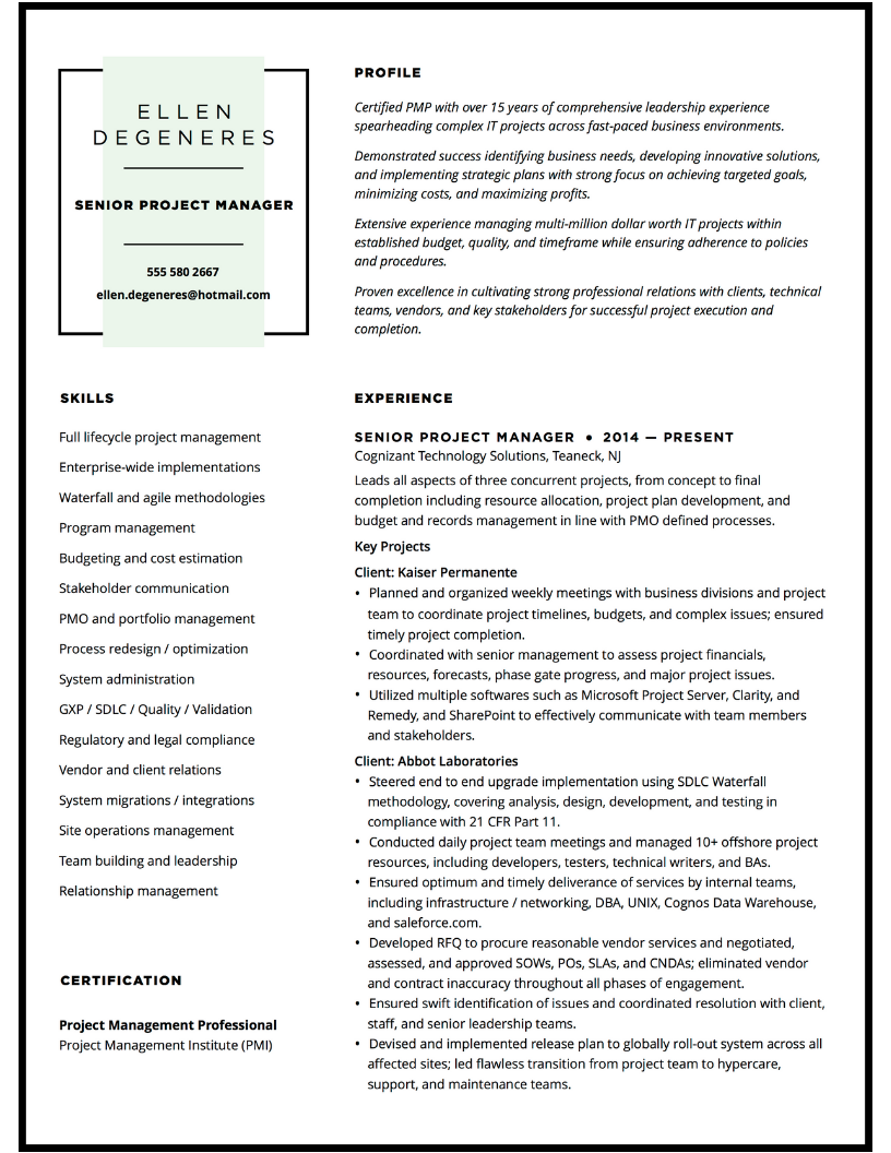 Senior project manager resume design