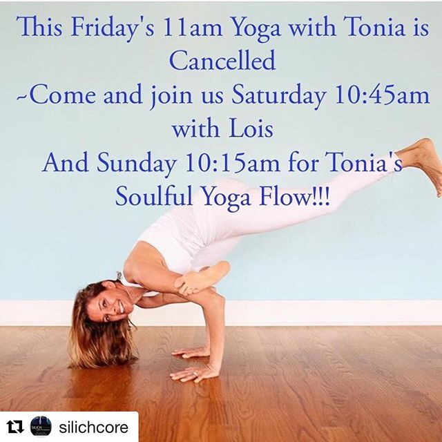 My new class at Silich Core on Saturday. Join me!  #Repost @silichcore with @get_repost ・・・ ☯️PSA!!! ☮️ 🔸There will be no 11am class this Friday 1/19, however you still have two chances to join us this weekend to relax, rejuvenate, and shake off those winter blues🔸 🏵Sign in through our website in Mind Body for two invigorating classes from two soulful Yogi's!🏵#mindbody #myzone #yoga #relax #flow @toniadangelo @loisnesbittyoga