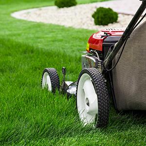 mower maintaining yard