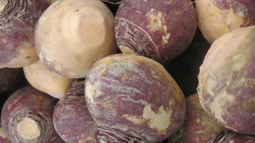MASHED TURNIPS WITH BACON AND CHIVES   INGREDIENTS 8 cups of chopped turnips (about 10-12 medium turnips), peeled and diced bone broth or water for boiling ½ pound of bacon 2 tablespoons bacon fat 2 tablespoons butter or ghee, melted ¼ teaspoon garlic powder ⅛ teaspoon onion powder sea salt and pepper, to taste  2 tablespoons fresh chives, snipped or chopped   INSTRUCTIONS Put diced turnips is a large pot and fill with water or bone broth.   Bring to a boil and let simmer, uncovered, for at least 30 minutes or until tender (the longer you simmer, the better because the less bitter it will be. Sometimes I let them simmer for over an hour!)   While the turnips are cooking, cook your bacon in skillet over medium heat until crispy.   Reserve 2 tablespoons of bacon grease and then crumble your bacon. Once turnips are done simmering, drain well.   Return turnips to pot and add all remaining ingredients, except the bacon and chives.   Mash to desired consistency.   Fold in bacon.   Top with fresh chopped chives.   Enjoy!   View Recipe Source