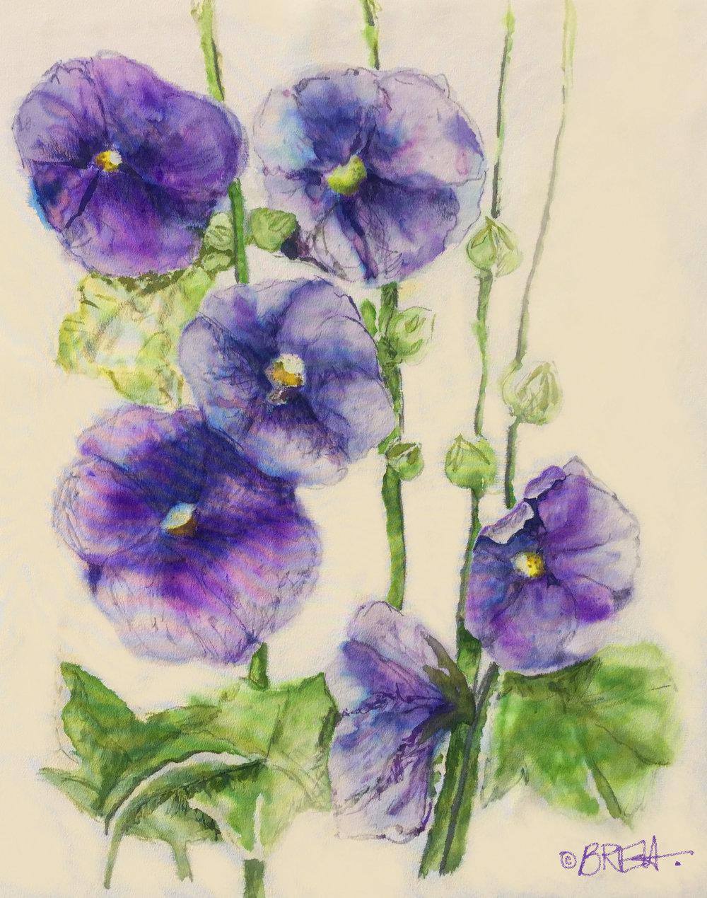 SA hibiscus orig purple.jpg