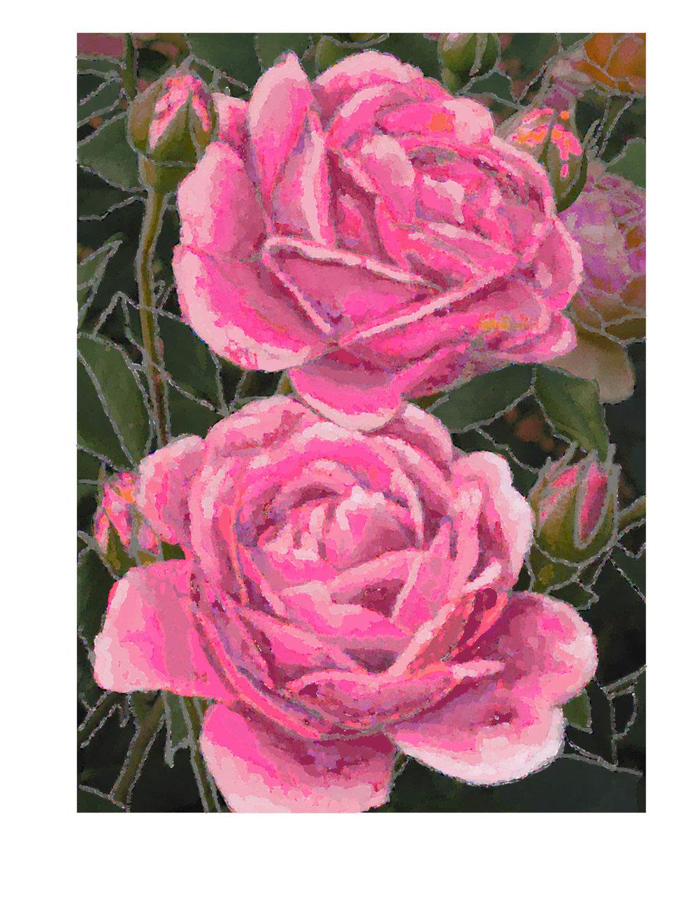 hot pink roses buds rug.jpg