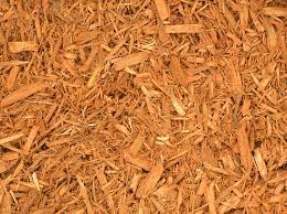 gold mulch.jpg