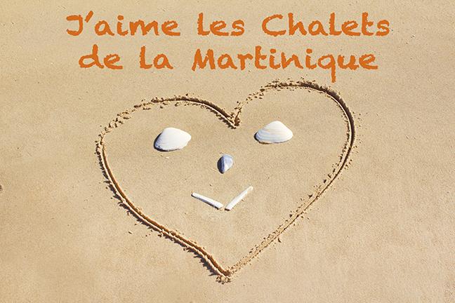 7333_j'aime_chalets.jpg