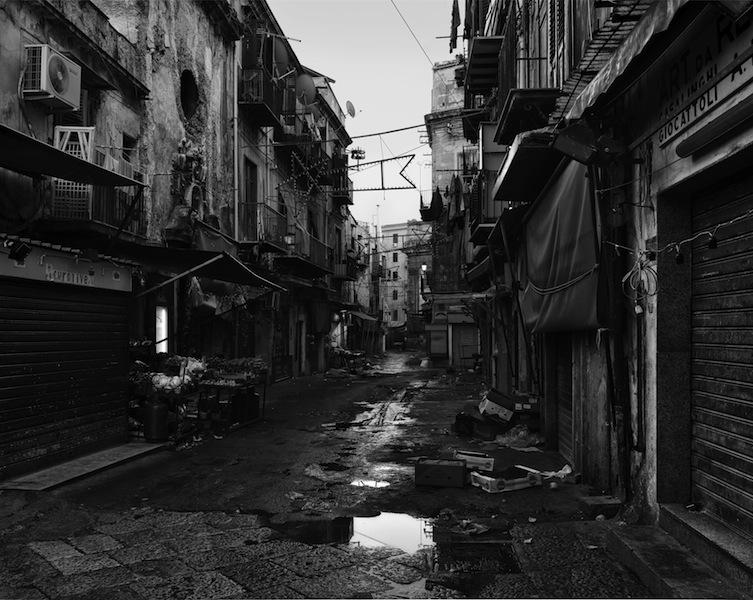 John Riddy, Palermo (Carmine), 2012