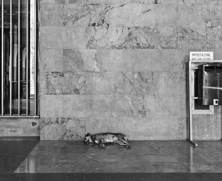 John Riddy, Palermo (Palazzo Delle Poste), 2012,  Archival pigment print, 29 1/8 x 36 5/8 inches, JRI1205  Lawrence Markey Inc.  6/6