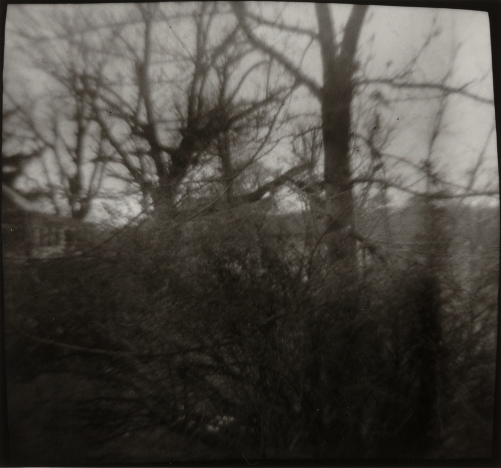 Nancy Rexroth,  Winter Trees, Chauncey, Ohio , 1976, Vintage gelatin silver print, sheet: 8 x 10 inches, image: 4 x 4 inches, NRE7601  Lawrence Markey Inc.  7/8