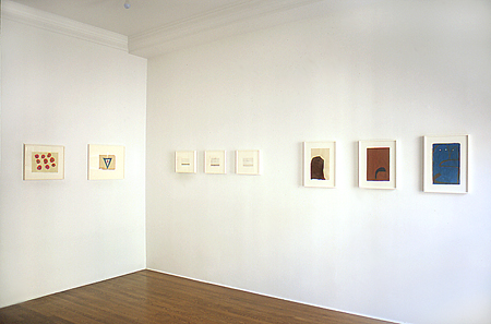 james-bishop-at-Lawrence-Markey-2003-installation-view