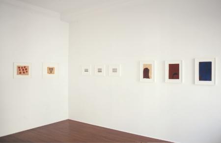 acharya-vyakul-at-Lawrence-Markey-2003-installation-view