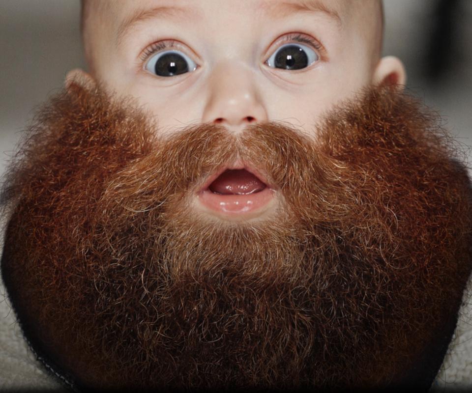 <br><br><br><h1>BEARDIFY</h1> <h2>Grow a beard.</h2></p>